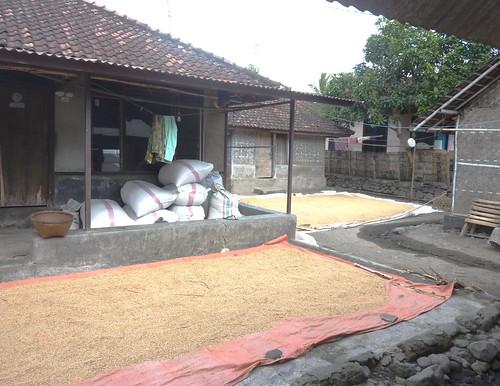 Indo 11-Lombok-Kuta (36)