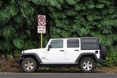 Pick A Caption! (BarryFackler) Tags: road sign warning island hawaii polynesia automobile jeep parking vegetation vehicle roadsign bigisland illegalparking asphalt kona rentalcar wrangler monstera 2014 honaunau konacoast noparkinganytime hawaiicounty southkona hawaiiisland thecoffeeshack noparkingzone westhawaii mamalahoahighway barryfackler jeepsportwrangler barronfackler