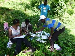 Uganda 19-013 our survey team undertaking fieldwork with communities of Bwindi. Credit Michelle Wieland) (darwin_initiative) Tags: poverty people forest wildlife conservation darwin environment uganda survey development biodiversity defra dfid