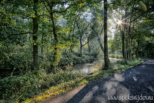 Landgoed Den Treek-Henschoten