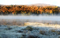 Fog over Lake on a Frosty Autumn Morning (klauslang99) Tags: nature photography klauslang canada algonquin park fog fall autumn hoarfrost color colour trees outdoors