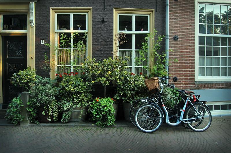 Delft15