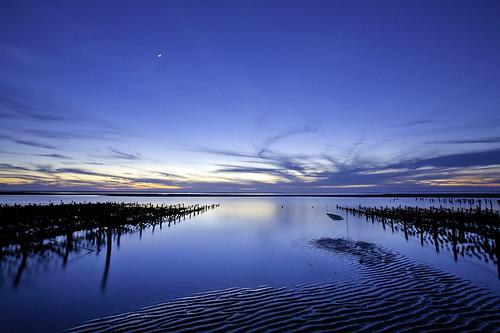 Oyster Farm @ Zouzongjiao Beach 肉粽角海灘蚵田 by olvwu | 莫方
