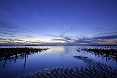 Oyster Farm @ Zouzongjiao Beach  (olvwu | ) Tags: longexposure blue sunset sea sky cloud moon beach water coast sand dusk tide horizon taiwan shore oyster newmoon seashore magicmoment oysterfarm changhua jungpangwu oliverwu oliverjpwu olvwu changhuacounty hsienhsi jungpang hsienhsitownship