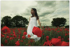 Poppy Breeze {Tianna} (sosij) Tags: red england girl canon like poppy poppies 5d wildflowers breeze poppyfields hertfordshire wildflowermeadow gotogether poppiesblowing littlegirlsandpoppies insertsomethinghere