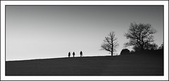 Three on the hill (artzazuri) Tags: blackandwhite bw naturaleza white black tree blancoynegro blanco nature canon landscape arbol monocromo negro paisaje bn bosque campo euskalherria basquecountry paisvasco navarra pasvasco urbasa bwblanco negroblack blancoyegro