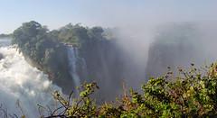 Victoria Falls_2012 05 24_1716 (HBarrison) Tags: africa hbarrison harveybarrison tauck victoriafalls zimbabwe zambeziriver mosioatunya