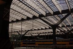 The New Roof (Digital Adrian) Tags: roof light station train pen four lumix rotterdam pattern g central mini olympus panasonic e micro dxo 17 pancake 20 asph trein centraal thirds optics koploper mft pm1