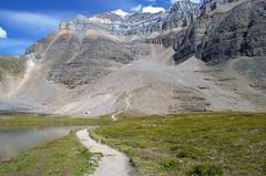 DSC_6420 (AmitShah) Tags: banff canada nationalpark