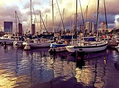 Kewalo Basin Sunset (jcc55883) Tags: hawaii honolulu kakaako kewalobasin sunset sky clouds reflections boats ipad ipadair oahu