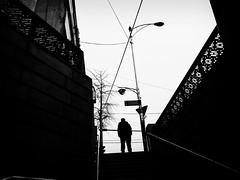 R0016161 (kenny_nhl) Tags: ricoh grd grdiv grd4 provoke tree street streetphotography dark shadow snap shot scene surreal streephotography seoul visual 28mm monochrome black blackwhite bw blackandwhite people photo photography explore explored life city korea