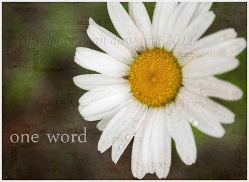 One Word {287/365} {sh 32}
