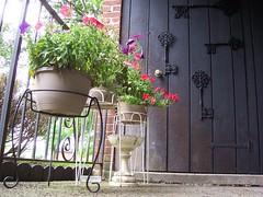 Summer Patio (Lisa Kline1) Tags: door flowers summer keys landscape outside apartment balcony petunias plantstands summerflowers hangingbaskets apartmentbalcony balconydecor firstfloorapartment