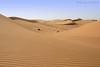 Desert Sand (TARIQ-M) Tags: texture landscape sand waves desert dunes riyadh saudiarabia بر الصحراء canonefs1855 الرياض صحراء رمال رمل طعس المملكةالعربيةالسعودية canon400d الرمل خطوط نفود الرمال كثبان تموجات تموج نفد
