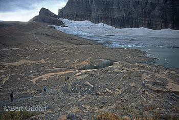 Grinnell Glacier 2006