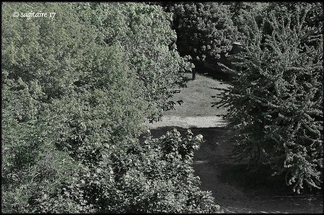 """Serie """"Desde mi ventana"""" : 11-05.010.3 -"""