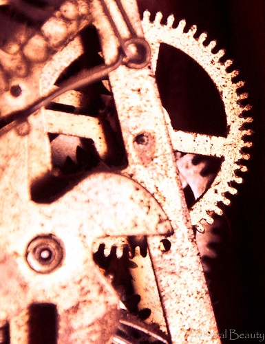 Gears of Time (split-toned)