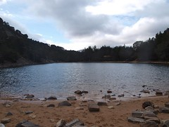 Glenmore - 09-04-2012 (agcthoms) Tags: scotland aviemore invernessshire glenmore lochanuaine