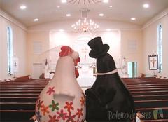 Casório no Poleiro! (POLEIRO DE CORES) Tags: chicken galinha handmade artesanato biscuit gourd casamento calabaza casal decoração gallinas noivos noivinhos cabaça toyart porcelanafria porongo poronga topodebolo poleirodecores