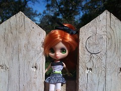 Amy Pond (Ela y Fungilandia) Tags: campo blythe pelirroja valla petiteblythe