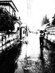 20120509_akitsu_01 (pqw93ct) Tags: bw white black monochrome rain japan tokyo nikon rainy      p300 akitsu