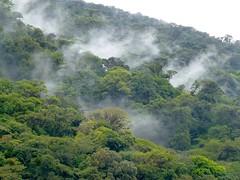 Laderas del volcán Tenorio (helicongus) Tags: