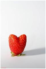 love fraise (Yvan 83 500) Tags: red white green love canon rouge soleil vert 7d hart blanc fraise sud cœur pépin amoure