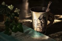 Sunday morning meditations.. (Jolynn's Photography) Tags: mug religious bible tea plant meditation