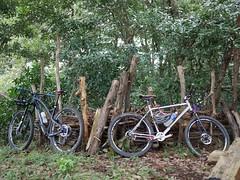P1030629 (wataru.takei) Tags: mtb lumixg20f17 mountainbike trailride maintenance japan