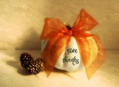 Happy Thanksgiving Canada!  (Through Serena's Lens) Tags: happythanksgivingcanada pumpkin white ribbon pinecone texture stilllife tabletop