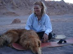 Atacama Dog - Santiago, Chile Study Abroad