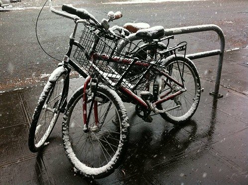 Bikes Covered in Snow in Fremont