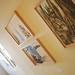 2010/11 art steinerwirt 017