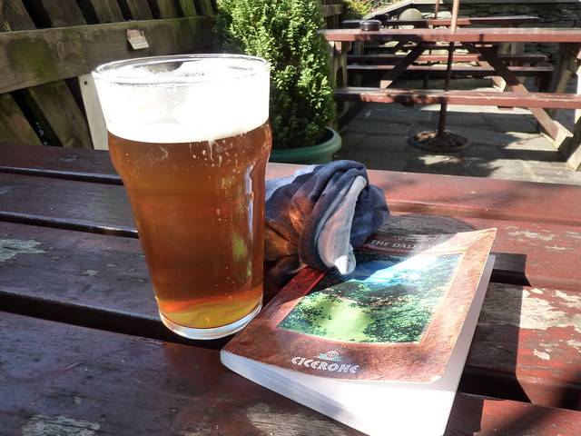 Pint, guide book and a bandanna