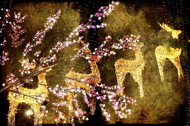 Santa's Enchanted Forest in Texture by Nancy Violeta Velez.
