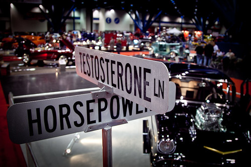 testosterone & horsepower
