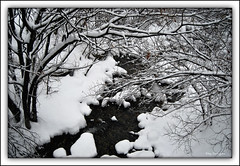 Snow in b/w (Eloy Rodrguez (+ 3.000.000 Views - Thanks )) Tags: christmas xmas winter bw snow ski blancoynegro nature skiing hiver nieve val invierno neige beret eloy baqueira lleida esqui valdaran daran baqueiraberet valldaran pladeberet valdearan lavalldaran nautaran eloyrodriguez mygearandmepremium viehlla mygearandmebronze