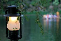 Illuminating the River... (Ring of Fire Hot Sauce 1) Tags: light disneyland lantern frontierland riversofamerica