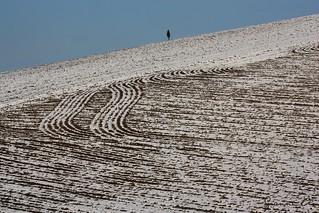 Disegni di neve (AL) - Italia