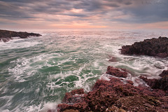 emocean... (Mac Danzig Photography) Tags: ocean california sunset seascape landscape cove abalone shorelinepark rancho palosverdes tnc11