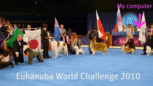 Eukanuba World Challenge