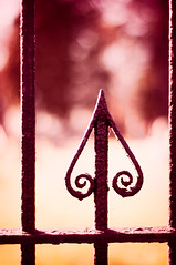 Fence Friday. (CarolynsHope) Tags: red fence gate warm warmth tones fencefriday carolynshope