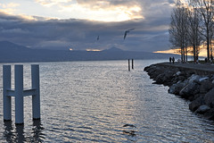 Cully, Vaud, Switzerland, Geneva Lake (photoriel) Tags: winter lake water landscape switzerland lman cully vaud genevalake laclman kartpostal flickrlovers greatshotss