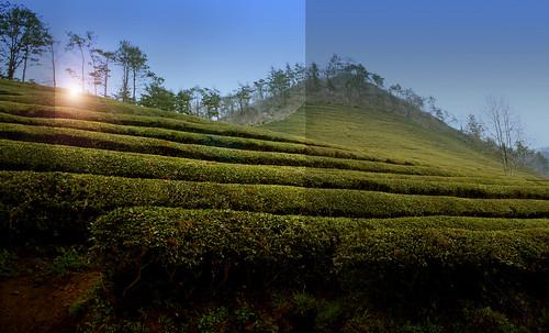 "Peldaños y Espejos • <a style=""font-size:0.8em;"" href=""http://www.flickr.com/photos/30735181@N00/5261772025/"" target=""_blank"">View on Flickr</a>"