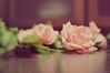 Lluvia de rosas sobre el mar (Lunayda) Tags: christmas pink holiday tree rose nikon soft floor decoration nikond5000