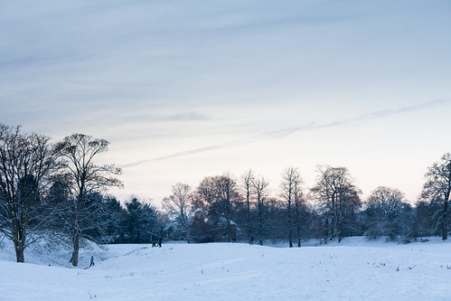 Sledgers at Castle Meadows