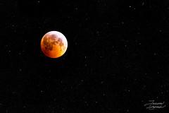 lunar eclipse Winter solstice