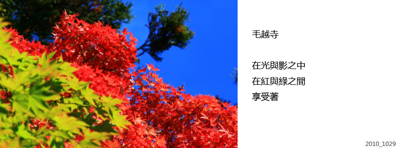 20101029_272