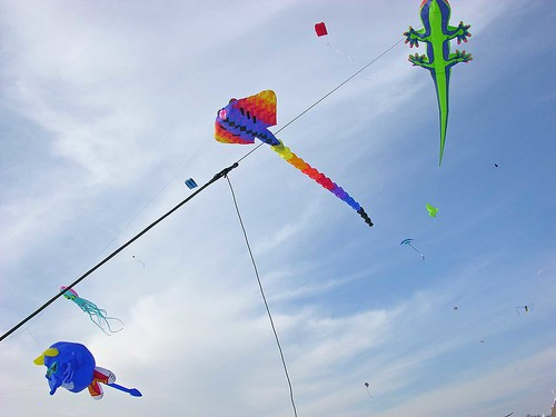 Winter Kite Festival 2006 assorted friends