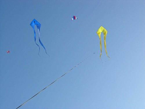 Winter Kite Festival 2008 thick kite line